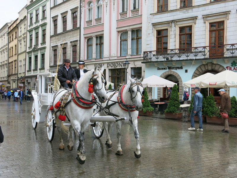 Horse drawn carriage tours through Krakow