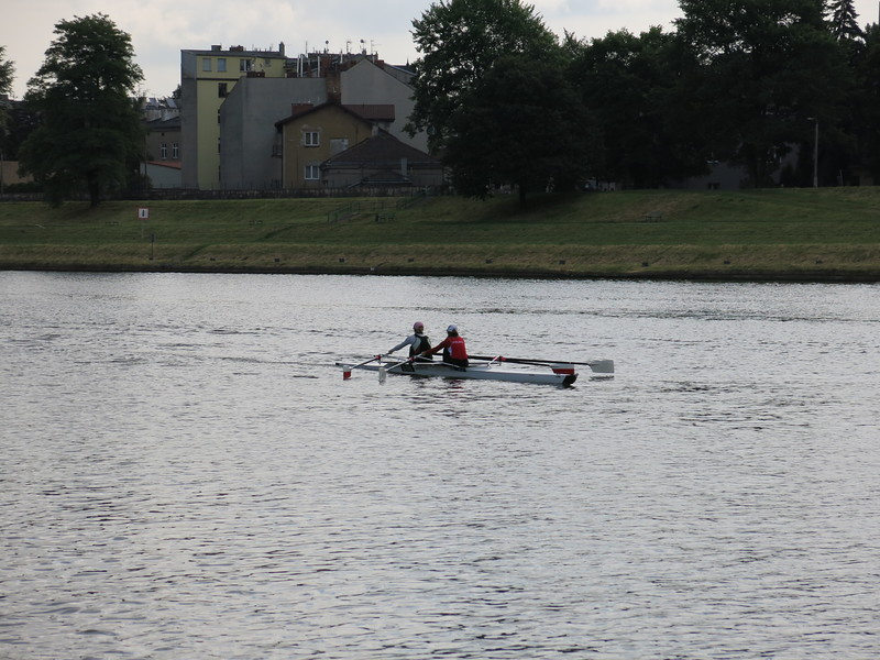 Rowing training on the Wisla river