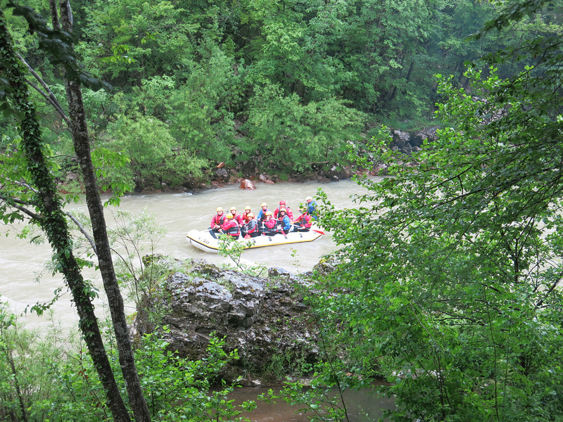 Rafting on a misty Tara river